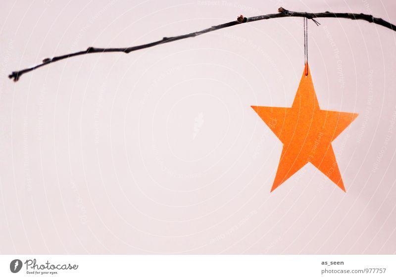 Stern in Orange Weihnachten & Advent Farbe ruhig Winter Gefühle Stil Lifestyle Stimmung hell Wohnung orange Design leuchten Dekoration & Verzierung elegant