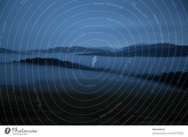 5.35 uhr. Himmel Natur Ferien & Urlaub & Reisen Pflanze Baum Landschaft Wolken Ferne Winter Wald Umwelt Berge u. Gebirge Herbst Wiese Gras Wetter