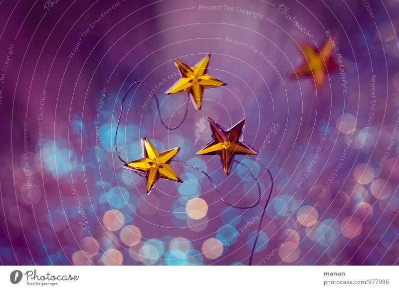 Funkelstern Feste & Feiern Weihnachten & Advent Weihnachtsdekoration Weihnachtsstern Weihnachtsbeleuchtung Zeichen Stern (Symbol) gold violett rosa türkis