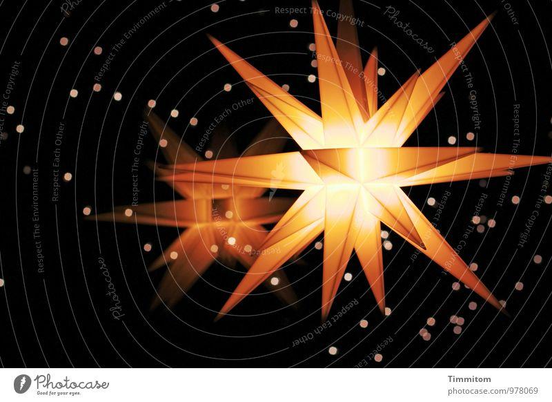Alle Jahre... Häusliches Leben Fenster Licht Weihnachtsstern Stern (Symbol) leuchten ästhetisch dunkel hell gelb gold schwarz Gefühle Vorfreude Zusammensein