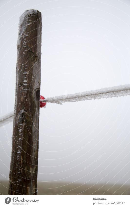 vollpfosten. Winter kalt Umwelt Berge u. Gebirge Wiese Schnee Wege & Pfade Holz Linie Wetter Eis Feld wandern Klima Ausflug Frost