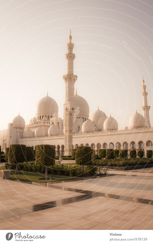 Abu Dhabi III Hauptstadt Bauwerk Gebäude Architektur Sehenswürdigkeit Wahrzeichen Denkmal außergewöhnlich Bekanntheit fantastisch Scheich-Zayid-Moschee Islam