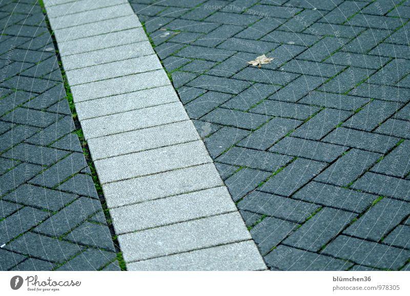 AST7 Pott | quer Stadt Blatt Wege & Pfade grau Linie trist Platz Bodenbelag Bürgersteig Stadtzentrum Altstadt Pflastersteine gestreift Städtereise Ruhrgebiet Fußgängerzone