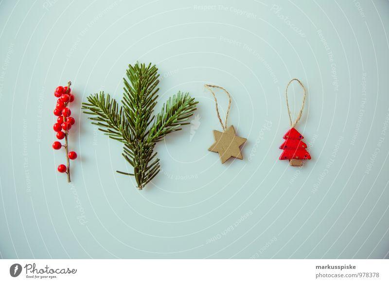 weihnachts decoration Weihnachten & Advent Pflanze grün rot Stil Lifestyle Wohnung Häusliches Leben elegant Dekoration & Verzierung Design gold retro Zeichen