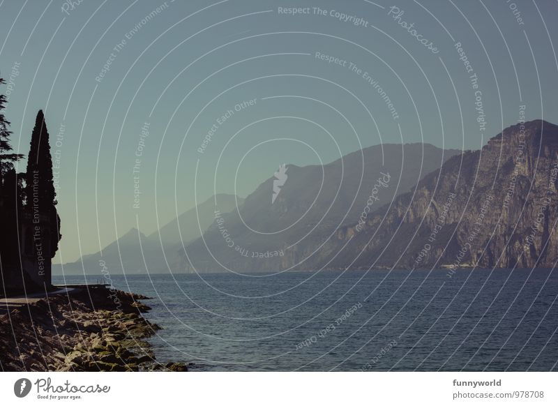Garda mit Baum Ferien & Urlaub & Reisen Ferne Sommerurlaub Berge u. Gebirge wandern Natur Landschaft Wolkenloser Himmel Schönes Wetter Felsen Alpen Seeufer