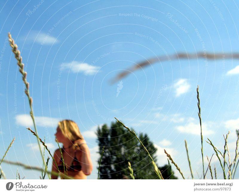 Du wirst beobachtet... unbeobachtet Sommer Sonnenbad Bikini Badeanzug Frau blond Moral beobachten Erholung Voyeurismus Blauer Himmel