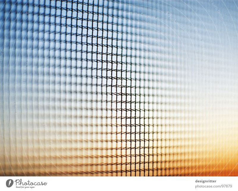 Gaze am Abend Fliegengitter Gitter Sicherheit Wand durchsichtig Sonnenuntergang fliegen Schutz Trennung Nähgarn Himmel Außenaufnahme