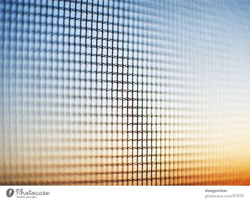 Gaze am Abend Himmel Sonne Wand Fliege fliegen Sicherheit Schutz durchsichtig Trennung Gitter Nähgarn Gaze Fliegengitter
