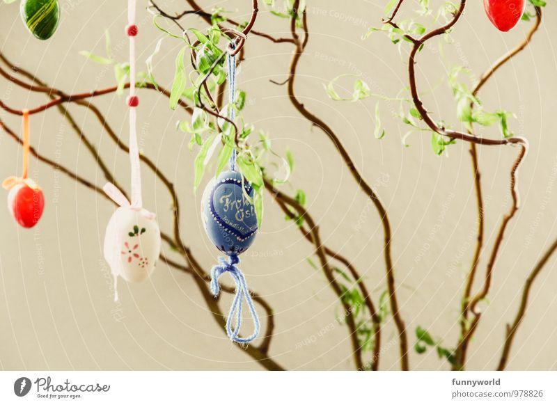 Eierweide Ostern hängen Weide Sträucher Schmuck Dekoration & Verzierung Frühling Pflanze Kitsch Blatt mehrfarbig Farbfoto Innenaufnahme Menschenleer