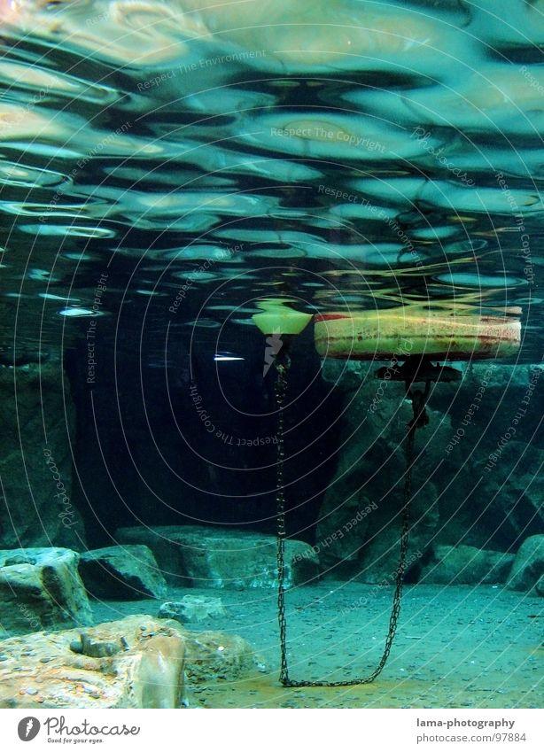Under the sea II Wasser Meer Küste See Wasserfahrzeug Wellen Felsen Schilder & Markierungen gefährlich bedrohlich Körperhaltung Klarheit Hafen tauchen