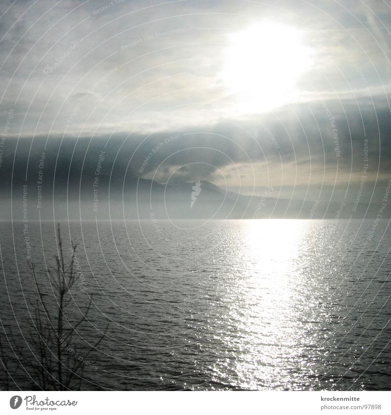 Lac Léman Wasser Baum Sonne ruhig Wolken Berge u. Gebirge grau See Wellen Wind Freizeit & Hobby Schweiz Sonntag schlechtes Wetter Lac Lèmon