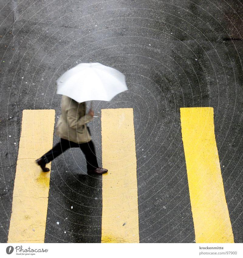 1, 2 oder 3 Stadt gelb Straße Regen gehen nass Verkehr Schutz Asphalt Streifen Regenschirm Gewitter Unwetter Fußgänger Teer Überqueren