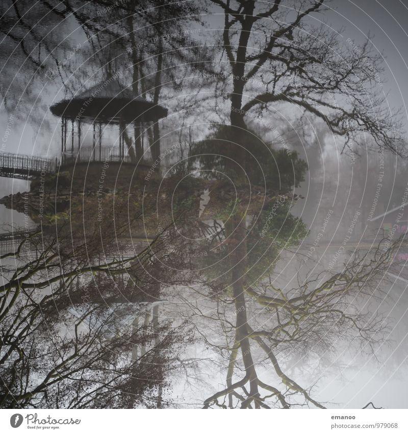Pavillon im See Natur alt Wasser Baum Landschaft Haus Winter Wald Herbst Küste grau Park Wetter Nebel Tourismus