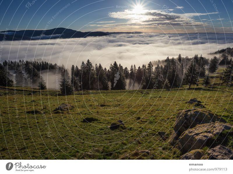 Inversionland II Himmel Natur Ferien & Urlaub & Reisen blau grün Sonne Baum Landschaft Wolken Ferne Wald Umwelt Berge u. Gebirge Herbst Gras Freiheit