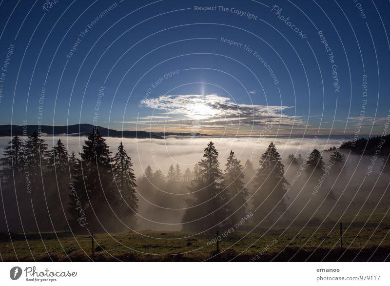 Inversionland Himmel Natur Ferien & Urlaub & Reisen blau Baum Landschaft Wolken Ferne Wald Berge u. Gebirge Umwelt Herbst natürlich Freiheit Horizont Tourismus