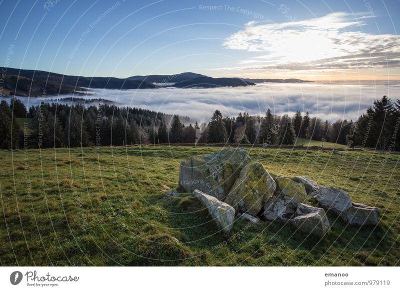Über dem Nebelmeer Himmel Natur Ferien & Urlaub & Reisen Landschaft Wolken Ferne Wald Umwelt Berge u. Gebirge Herbst Gras natürlich Freiheit Felsen Luft Wetter
