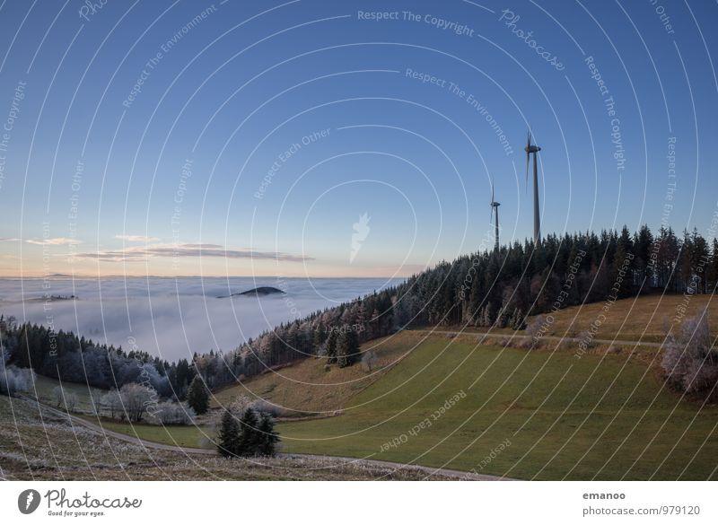 Holzschlägermatte II Himmel Natur Ferien & Urlaub & Reisen Blume Landschaft Wald kalt Umwelt Berge u. Gebirge Herbst Gras Horizont Energiewirtschaft Luft Wetter
