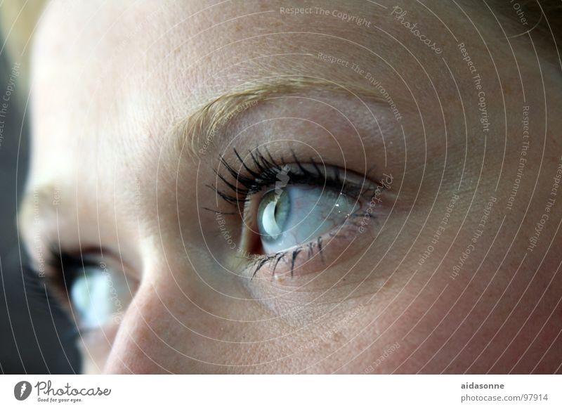 Augenblick Frau Gesicht Auge Wimpern Wimperntusche