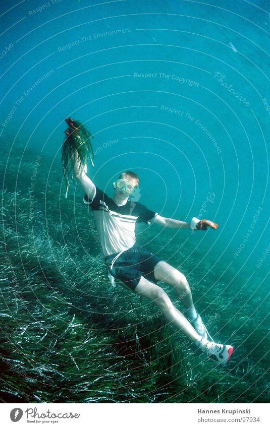 Plantage Wasser Ferien & Urlaub & Reisen Meer Freude See Arbeit & Erwerbstätigkeit Freizeit & Hobby Insel Fisch T-Shirt tauchen Italien Unterwasserpflanze