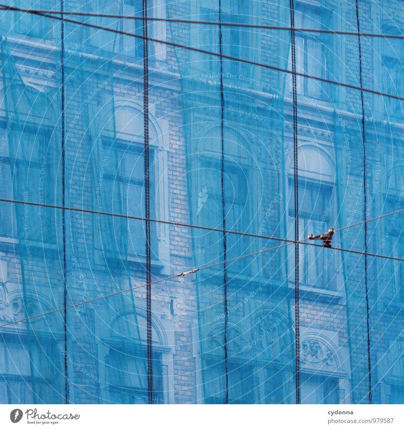Ebenen Stadt blau Farbe Haus Fenster Leben Architektur Linie Fassade Wohnung Häusliches Leben ästhetisch Beginn Vergänglichkeit Wandel & Veränderung Baustelle