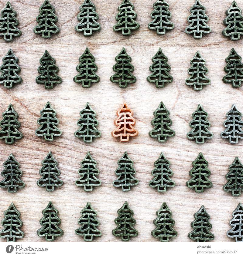 Ausreißer Ernährung Nudeln Essen Weihnachten & Advent Weihnachtsbaum grün orange Wald Tanne Farbfoto mehrfarbig Innenaufnahme Muster Strukturen & Formen