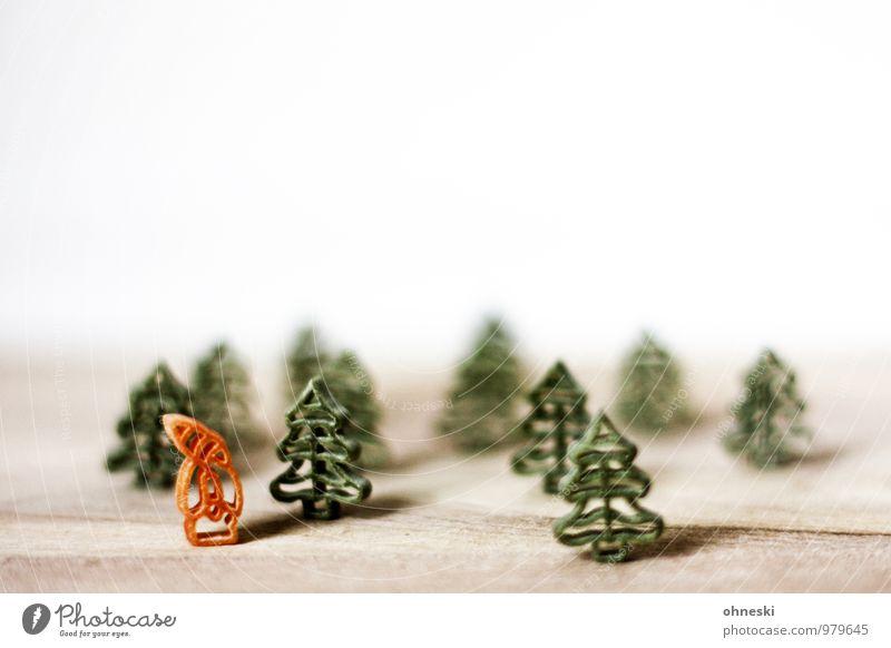 Draußen vom Walde Weihnachten & Advent grün Wald Weihnachtsbaum Tanne Weihnachtsmann Nudeln Weihnachtsdekoration