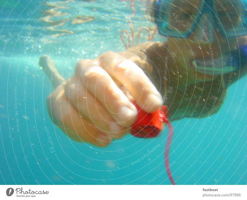 underwater love Taucher Ferien & Urlaub & Reisen Frieden Sommer diver swimming under water Unterwasseraufnahme Freude hope Schwimmen & Baden