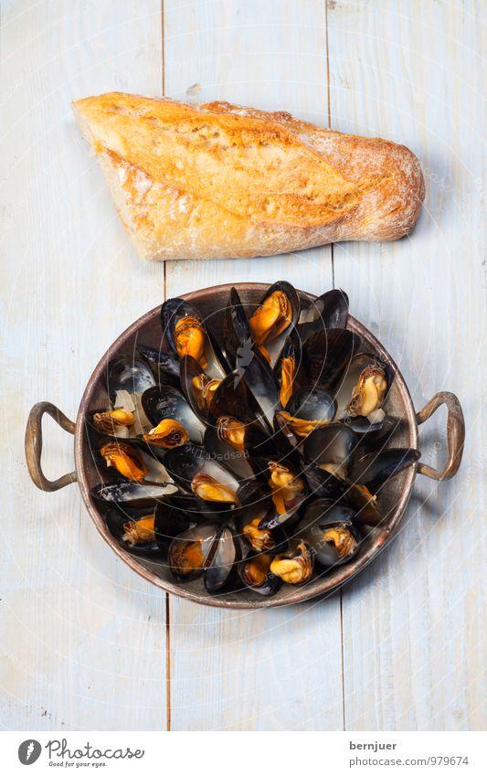 Mussels from Brussels Speise Lebensmittel Foodfotografie offen Kochen & Garen & Backen gut lecker Bioprodukte Holzbrett Schalen & Schüsseln Brot Backwaren Abendessen Teigwaren Mittagessen Muschel