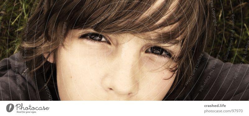 Sprachlos Mensch Kind Jugendliche Gesicht Auge dunkel Junge oben Haare & Frisuren Kopf Wärme hell braun Nase Perspektive Coolness