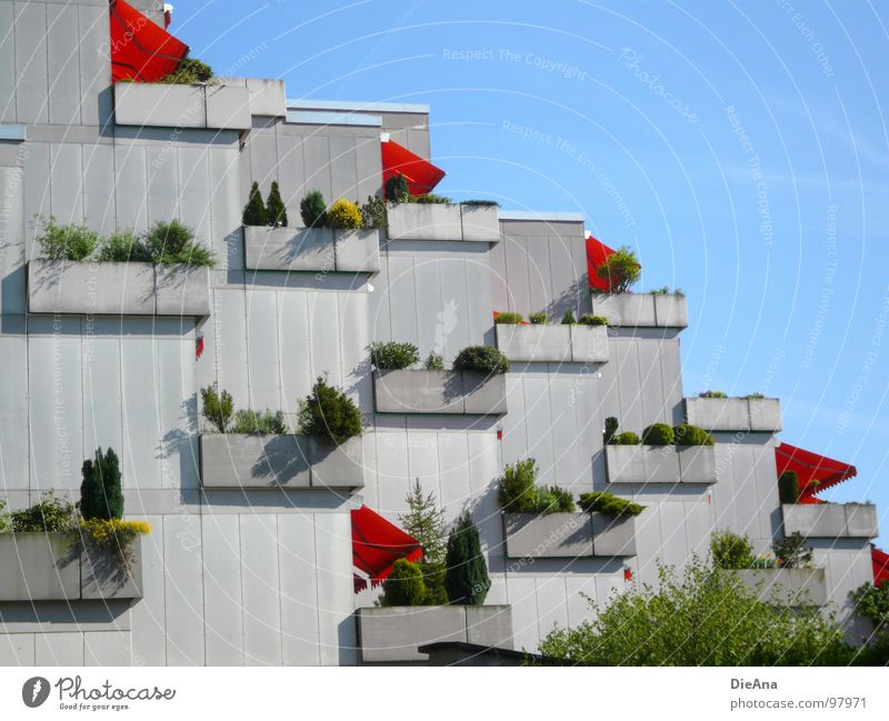 Wir bleiben zuhause! Balkon Stadt Frühling Sommer Betonklotz Pflanze himmelblau Gebäude Haus Karlsruhe Wetterschutz Leben Gesellschaft (Soziologie)