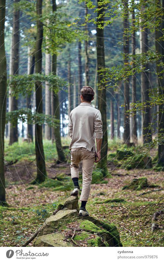 Naturverbunden Mensch Natur Jugendliche Sommer Erholung Einsamkeit Landschaft ruhig Junger Mann 18-30 Jahre Wald Umwelt Erwachsene Leben Wege & Pfade Gesundheit