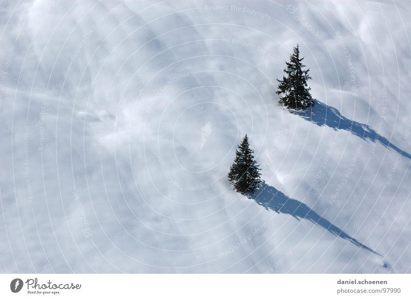 wer will schon Sommer ????? weiß Baum Ferien & Urlaub & Reisen Winter Landschaft Schnee grau Freizeit & Hobby wandern Ausflug fahren geheimnisvoll Tanne Skifahrer unklar Winterurlaub