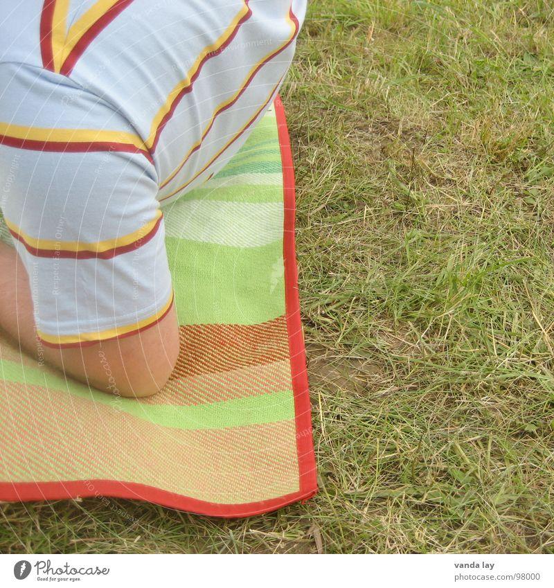 Gestreift picknicken Mensch grün Sommer Erholung Ernährung Gras Arme Streifen T-Shirt Konzert Quadrat Decke Picknick gestreift Musikfestival Gelenk
