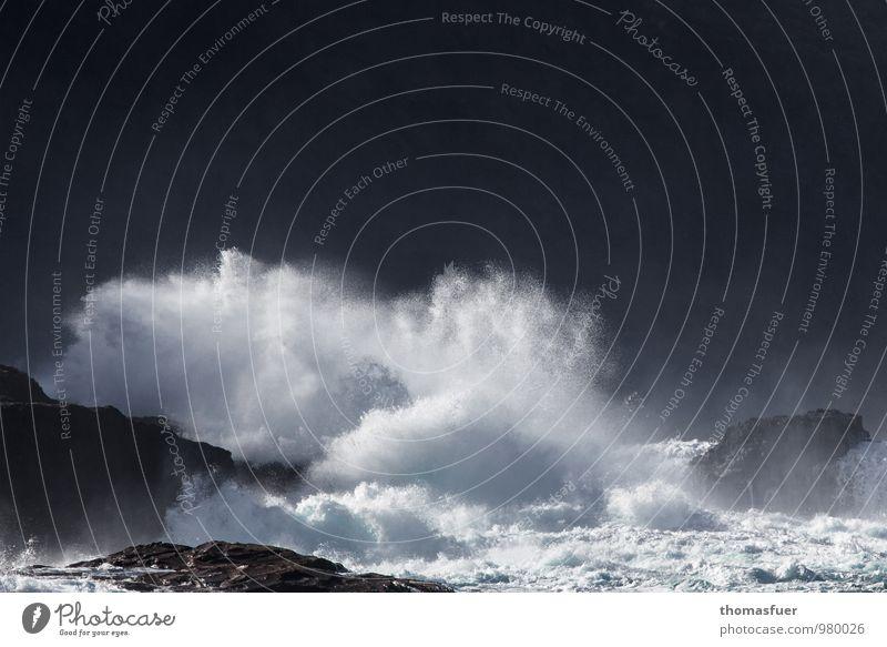 Die große Grippewelle Strand Meer Wellen Umwelt Natur Urelemente Wasser Wind Sturm Küste Riff Insel toben Aggression ästhetisch bedrohlich gigantisch wild Wut