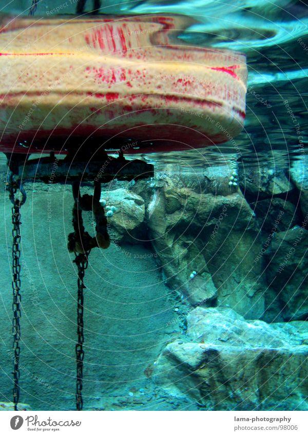 Under the sea III Schifffahrt Unterwasseraufnahme Boje Wasserfahrzeug Meer See Marine Seezeichen Fass Gewässer Fahrwasser Leuchtturm Im Wasser treiben