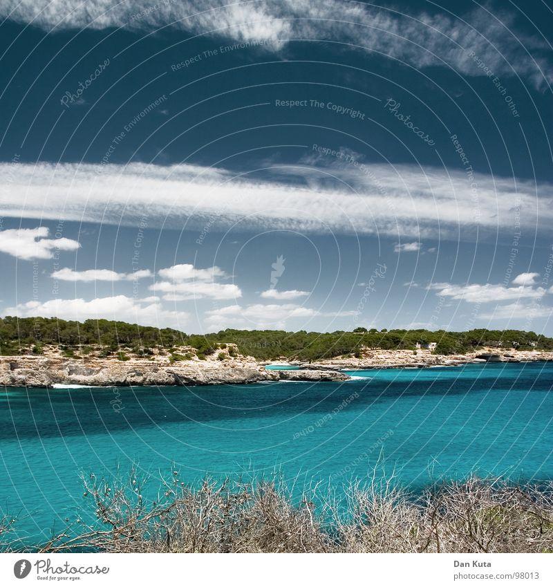 Sanfte Freiheit Lust Luft beweglich genießen Meer Wolken Physik Ferien & Urlaub & Reisen türkis Wald Baum See Wasserfahrzeug Sportboot Strand tauchen Algen