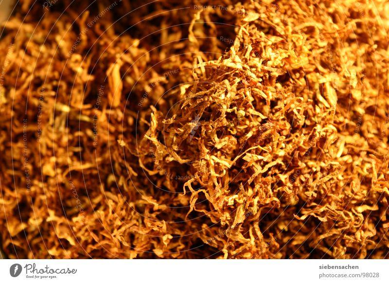i hate smoking braun Tabak Zigarette Hintergrundbild gefährlich gold Rauchen texture Strukturen & Formen Suche