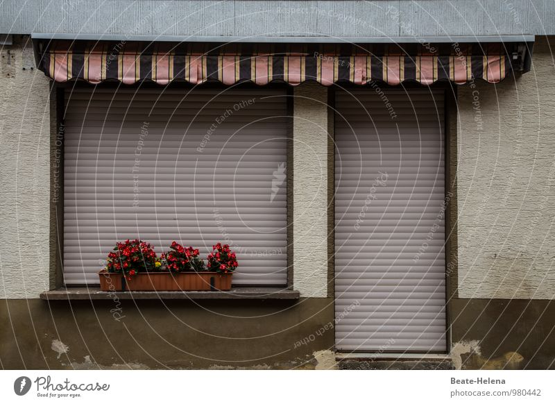 spießig | oder einfach nur etwas in die Jahre gekommen? Haus Einfamilienhaus Mauer Wand Terrasse alt Häusliches Leben braun gelb rot Verschwiegenheit