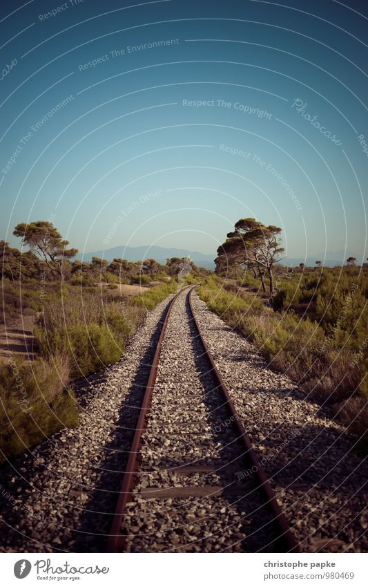 Never Stop Ferien & Urlaub & Reisen Ferne Freiheit Sommer Sommerurlaub Umwelt Natur Landschaft Pflanze Himmel Wolkenloser Himmel Horizont Schönes Wetter Dürre