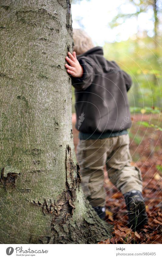 rundherum Mensch Natur Baum Winter Wald Leben Junge natürlich Spielen gehen Freizeit & Hobby Kindheit berühren Neugier Baumstamm Bildung