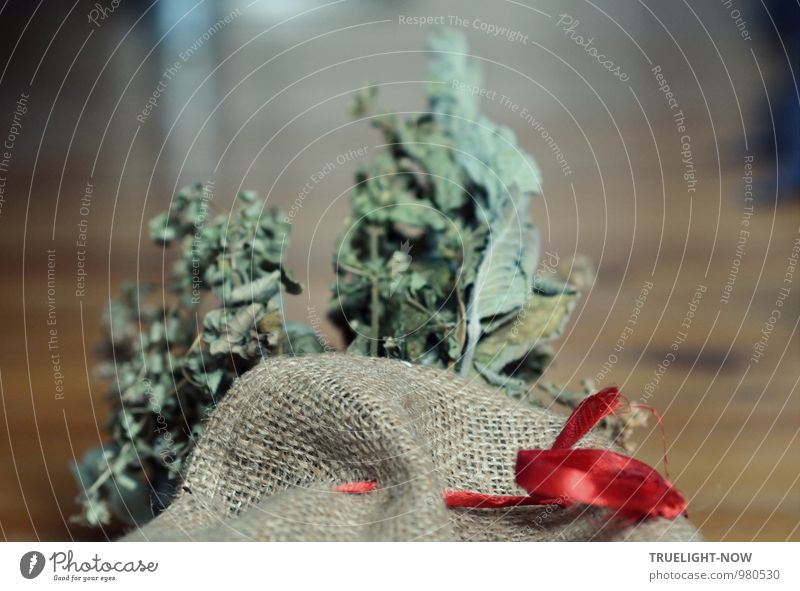 Dezember Jute-Sack mit rotem Band und Kräuter im Hintergrund Natur alt blau Weihnachten & Advent Pflanze grün Blatt Winter dunkel Stil grau Glück Feste & Feiern