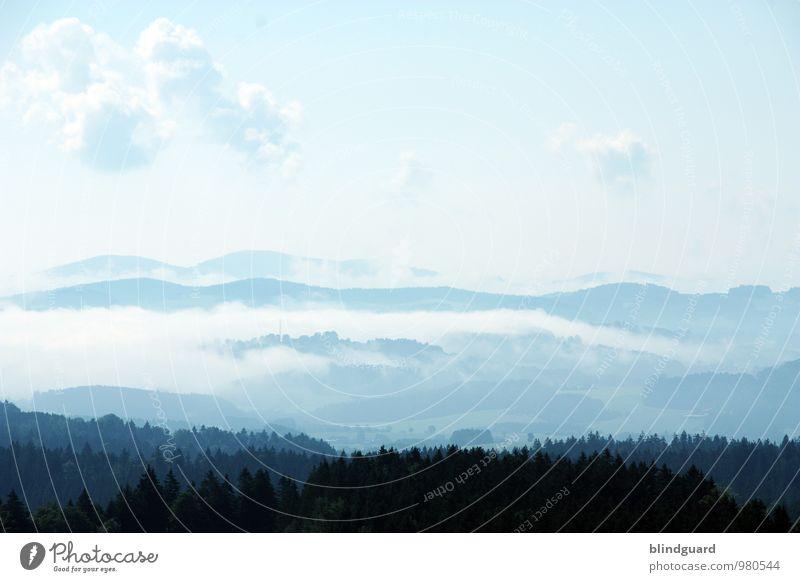 Far Far Away Himmel Natur blau Pflanze weiß Sommer Landschaft ruhig Ferne Wald schwarz Berge u. Gebirge Freiheit Luft Zufriedenheit Nebel