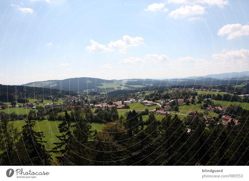 Land Of Confusion Himmel Natur Ferien & Urlaub & Reisen blau grün Sommer Erholung Landschaft Wolken Ferne schwarz Wald Umwelt Berge u. Gebirge Freiheit Idylle