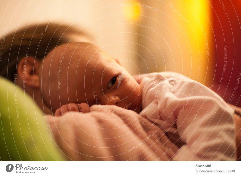 geborgen Mensch feminin Kind Baby Mutter Erwachsene Familie & Verwandtschaft 2 0-12 Monate 30-45 Jahre festhalten Blick Glück schön Vertrauen Sicherheit Schutz