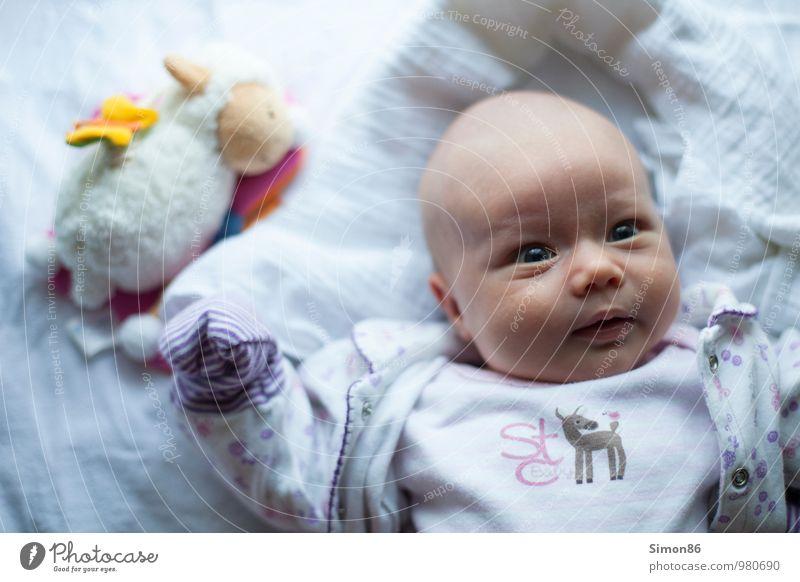 links liegen gelassen Spielen Kindererziehung Baby 1 Mensch 0-12 Monate Stofftiere Blick ästhetisch Neugier niedlich schön feminin weiß Verantwortung achtsam
