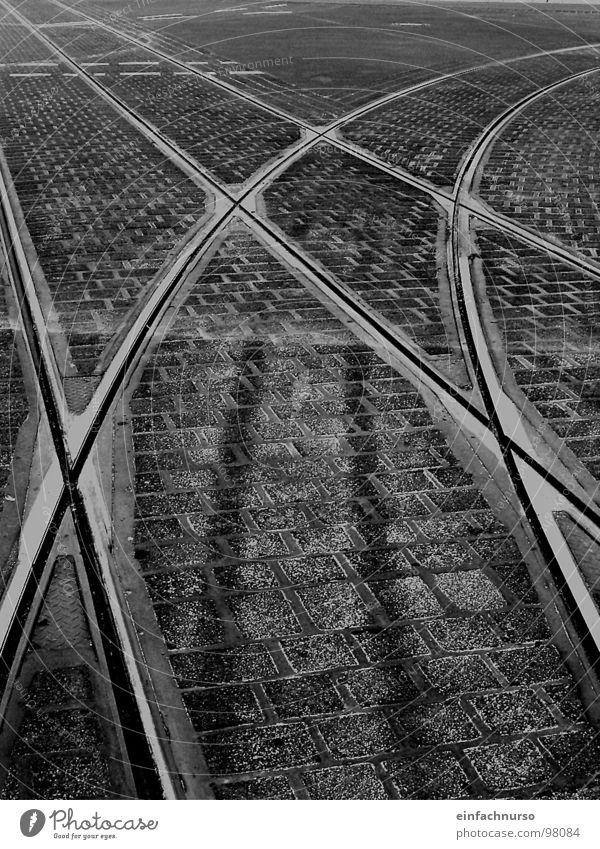 alle Wegen führen nach... Außenaufnahme Wege & Pfade Gleise kreuzen Verkehrswege Schwarzweißfoto Bahnschienen verzweigt Mischung Plastersteine Linie weich