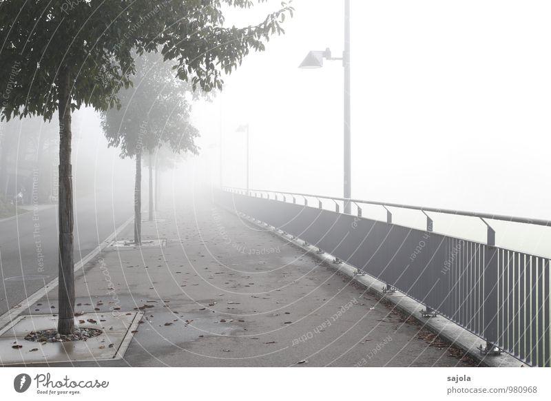 weg ins licht - bzw. nebelwand Umwelt Herbst schlechtes Wetter Nebel Baum Straße Bürgersteig leuchten Geländer Straßenbeleuchtung lichtvoll Lichtpunkt