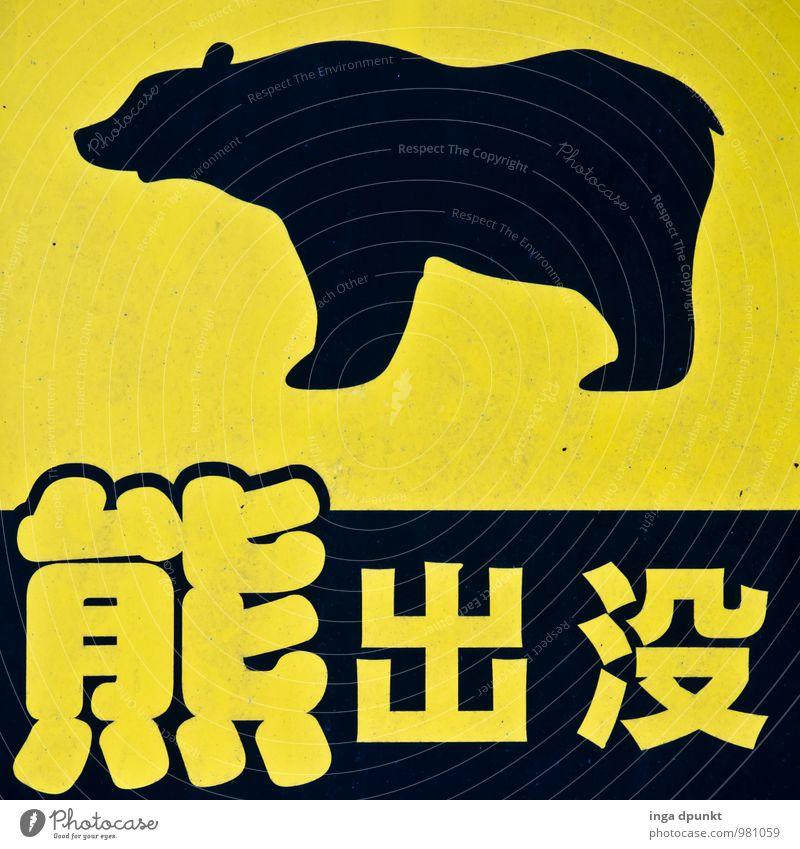 Bitte nicht kuscheln! Natur Tier schwarz gelb Wege & Pfade Metall Wildtier Tourismus wandern Hinweisschild Buchstaben Symbole & Metaphern Asien Japan Bär