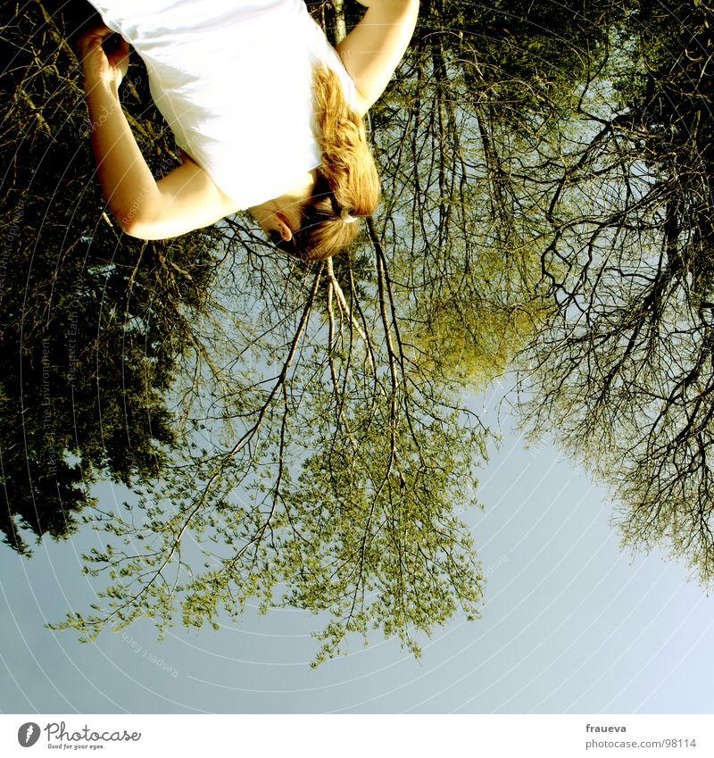 verkehrte welt Wald Baum Holzmehl Frau feminin Froschperspektive entgegengesetzt grün Zufriedenheit T-Shirt Farbe Sommer drehen weltbild blau Himmel Natur woman