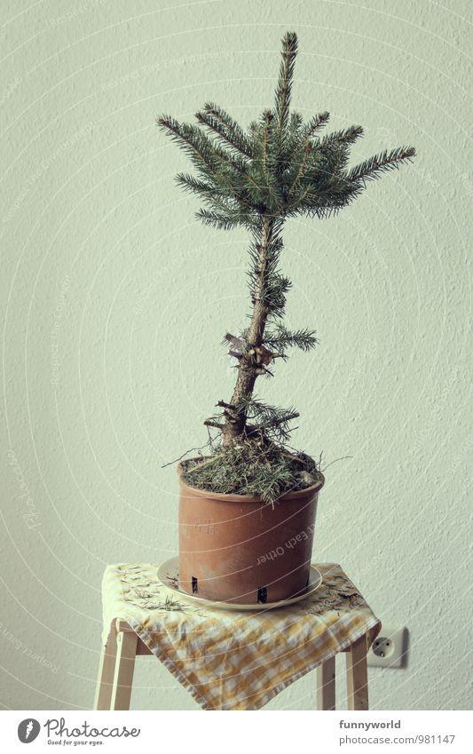 Anti Weihnachten Mensch - ein lizenzfreies Stock Foto von Photocase